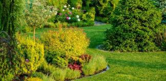 narzędzia i sprzęt do ogrodu
