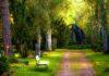 Ogród pałacowy